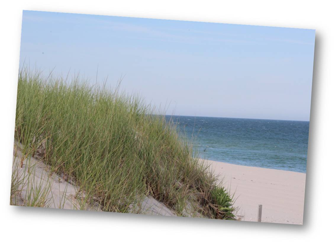 LBI Real Estate Buyer Information | Long Beach Island NJ Real Estate | LBI Real Estate Market